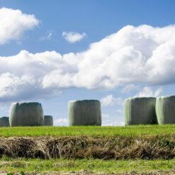 landbouwfolie-wikkelfolie-groene-balen