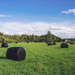 landbouwfolie-wikkelfolie-zwarte-balen